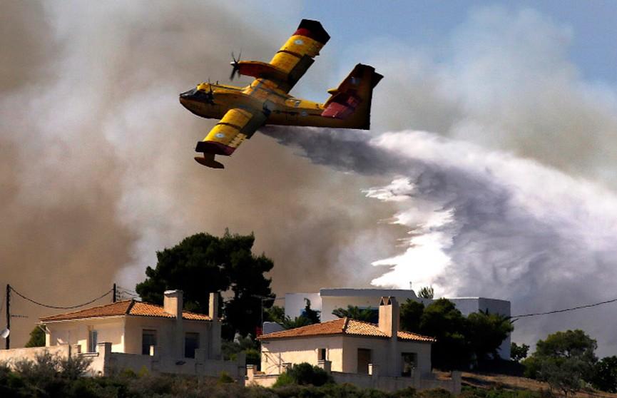 Масштабные пожары в Греции: свидетельство белоруски