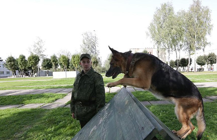 Кинологическому центру белорусской армии – 25 лет