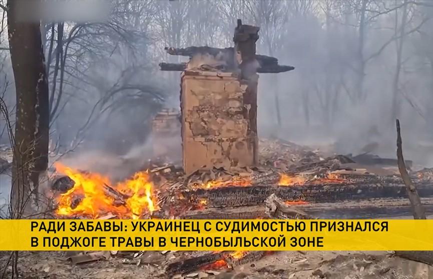 Пять гектаров Чернобыльской зоны выгорело из-за умышленного поджога