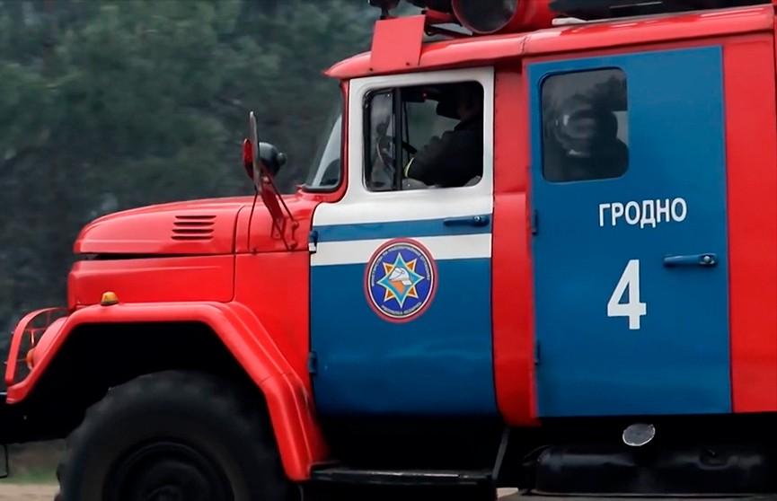 По всей стране вводится запрет на посещение лесов: близится вторая волна лесных пожаров