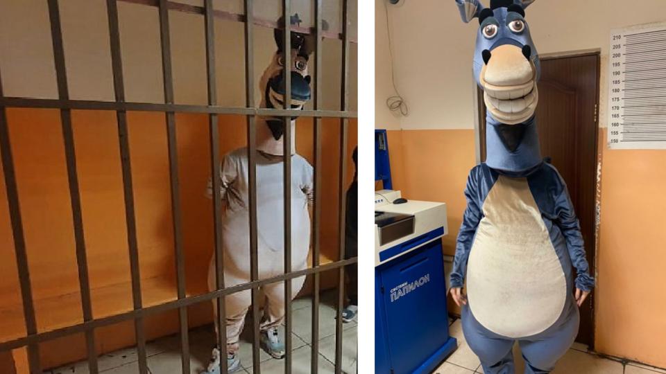 В Сочи полиция за хулиганство задержала «осла», «коня» и «зебру»