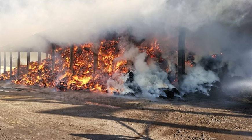 Замначальника Витебского УМЧС погиб на пожаре в Лиозно