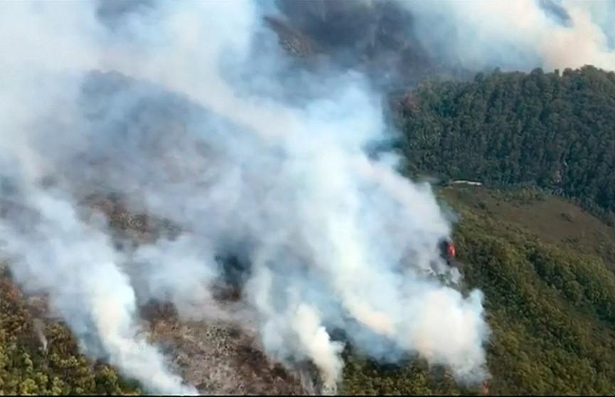 Из-за сильной жары в Австралии бушуют лесные пожары