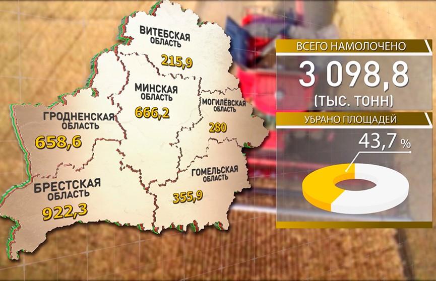 Белорусские аграрии завершили уборочную на 43%