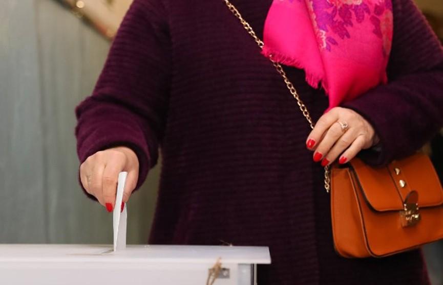Выборы состоялись во всех округах Гомельской и Могилевской областей