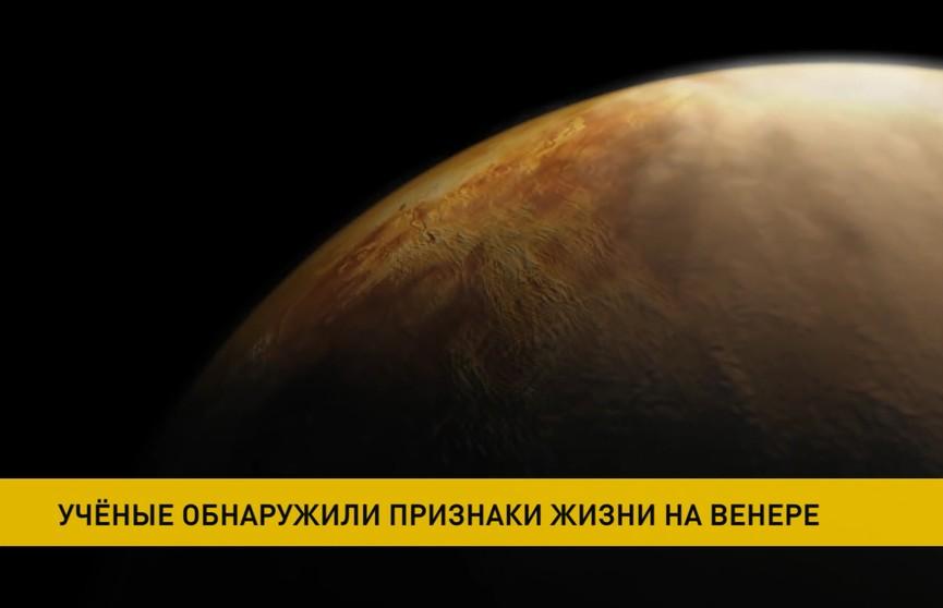 Признаки жизни обнаружены на Венере