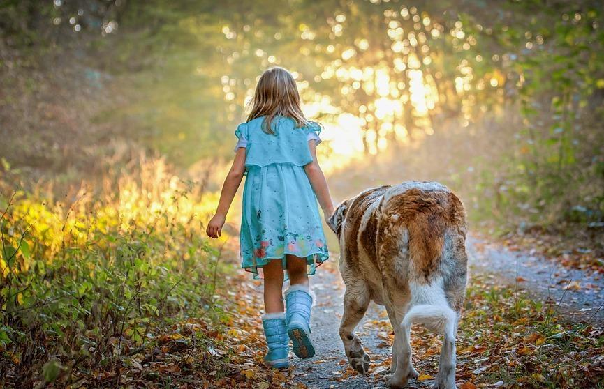 Ученые: собака может улучшить навыки общения у детей с аутизмом