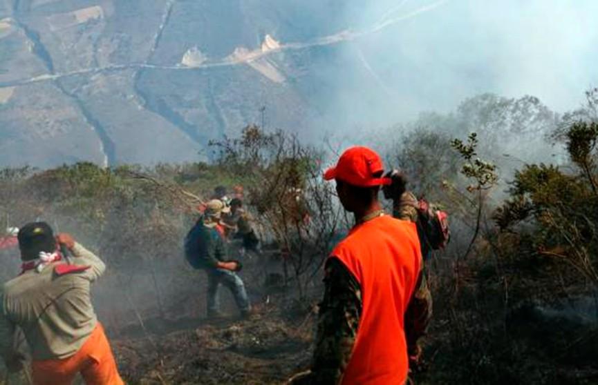 Пожары в Перу угрожают древним руинам Куэлапа