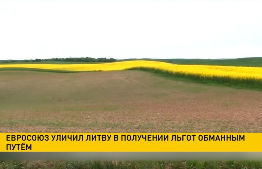 Евросоюз уличил Литву в получении льгот обманным путём