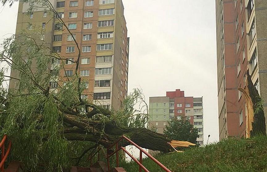 Из-за непогоды в Минске сместился павильон: пострадали студенты