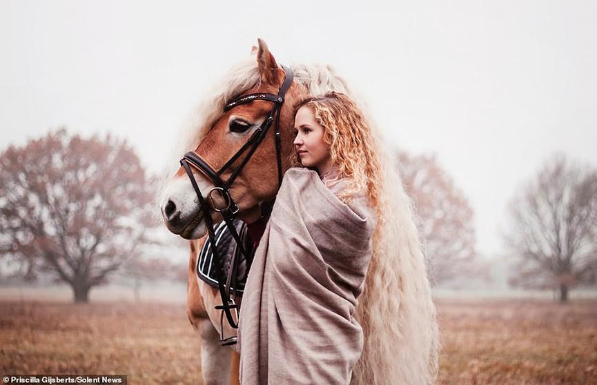 Лошадь с невероятно длинной кучерявой гривой стала звездой Instagram