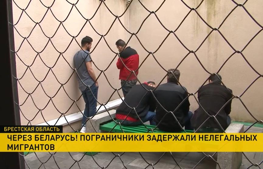 Нелегалы активизировались на белорусско-польской границе: за один день пограничники задержали пятерых человек