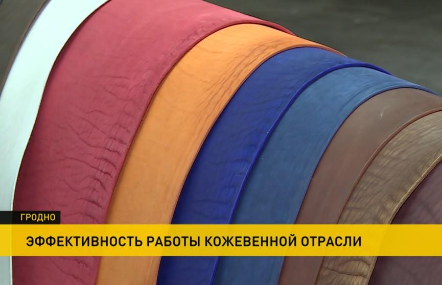 Анатолий Исаченко посетил Гродненское производственное кожевенное объединение