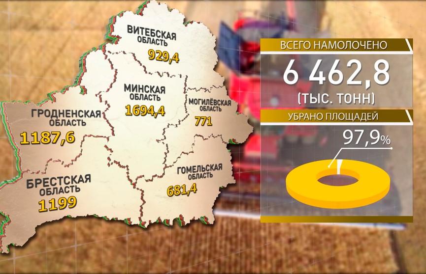 Уборка зерновых завершается: обмолотить осталось 2% площадей