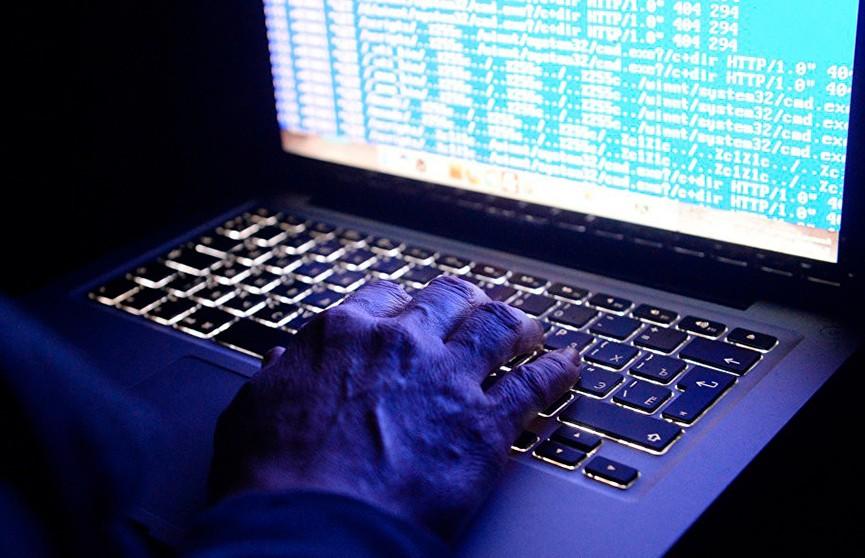 МВД и СК заблокировали один из крупнейших хакерских форумов