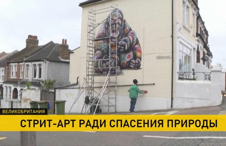 Британский художник расписывает стены домов, чтобы привлечь внимание к проблеме охраны окружающей среды