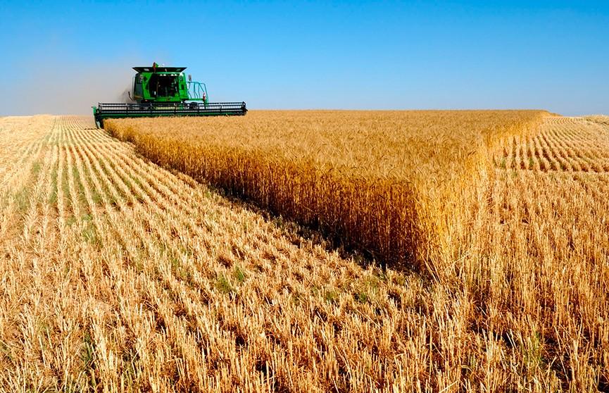 Благодарность Президента объявлена труженикам агропромышленного комплекса