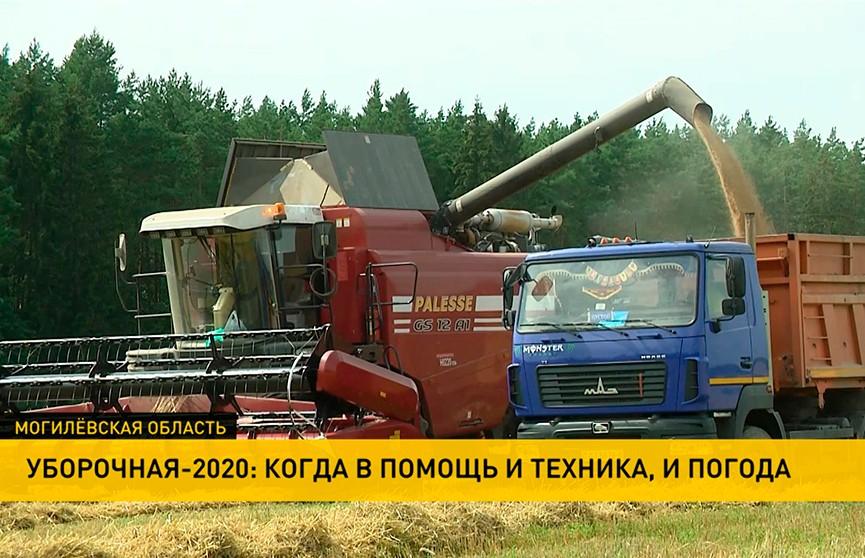 Уборочная кампания 2020. В Витебской области серьезно обновили парк комбайнов