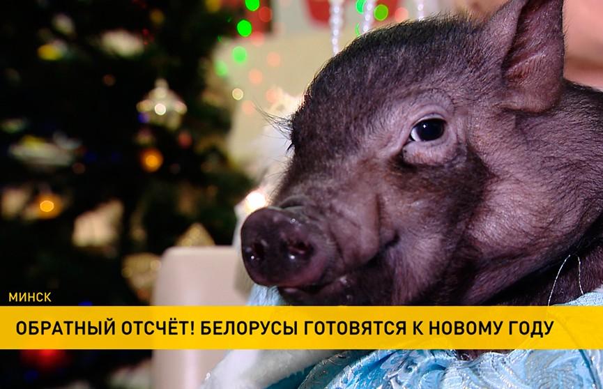 Новый год-2019: чем белорусы собираются удивлять родных и близких в праздничную ночь?