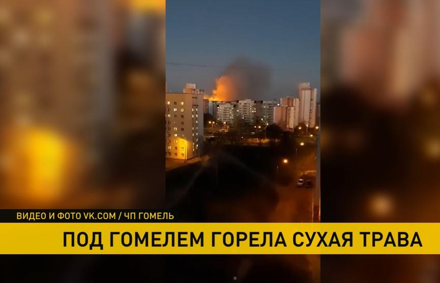 Сухая трава горела рядом с Гомелем: столб дыма видели из центра города