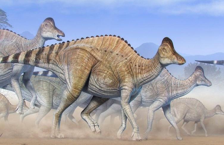В останках динозавра, которым 75 млн лет, сохранились фрагменты ДНК