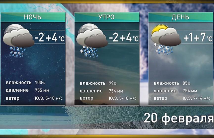 Прогноз погоды на 20 февраля: дождь, мокрый снег и ветер