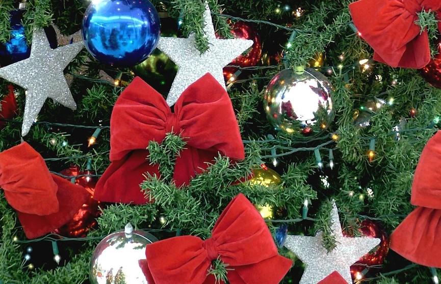 Как украсить новогоднюю елку в пять шагов