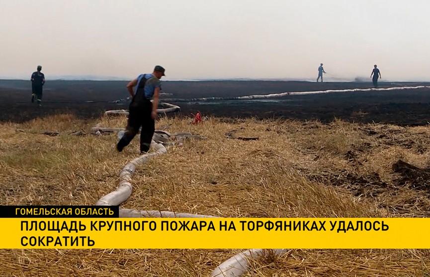 Площадь крупного пожара на торфяниках в Гомельской области удалось сократить