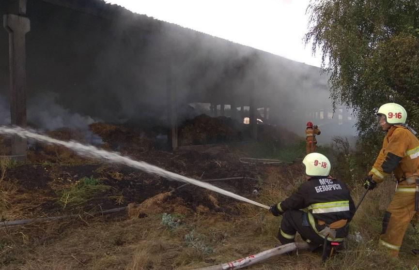69 тонн сена сгорело в Ивацевичском районе