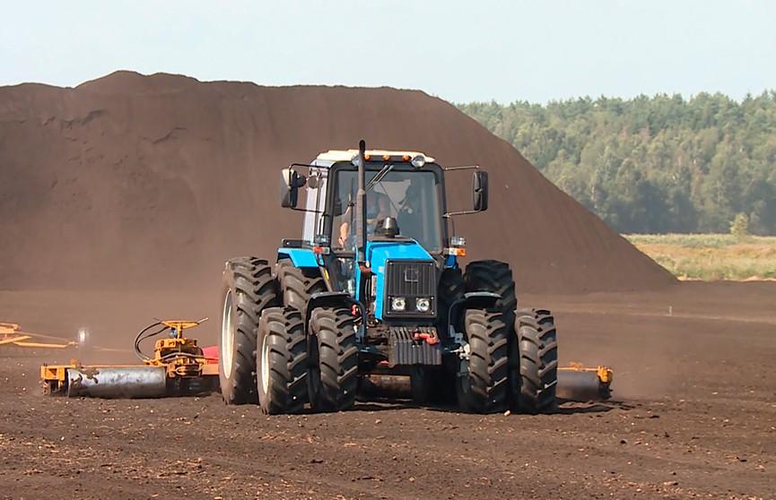Более 100 тысяч тонн белорусского торфа продано за границу в 2019 году