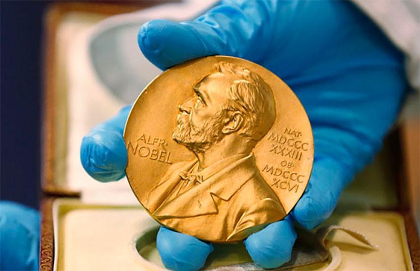 Нобелевскую премию по экономике присудили авторам усовершенствованной теории аукционов