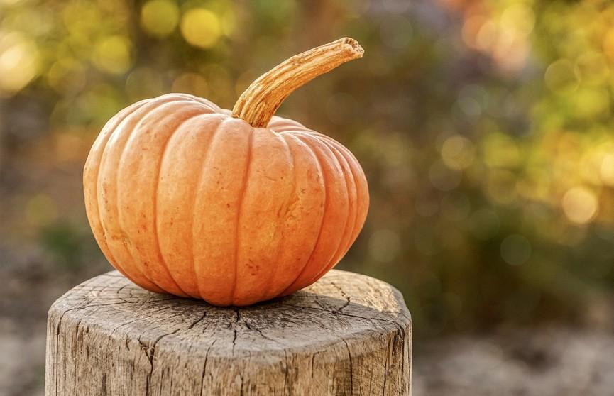 Для крепкого иммунитета: продукты, которые нужно есть осенью