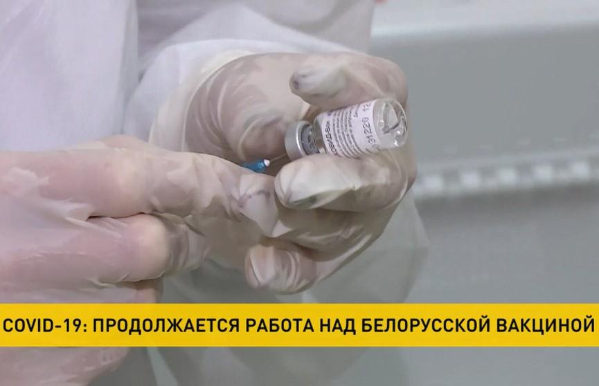 В Беларуси продолжается работа над отечественной вакциной от COVID-19