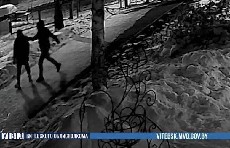 По горячим следам: на Витебщине раскрыли разбойное нападение на женщину