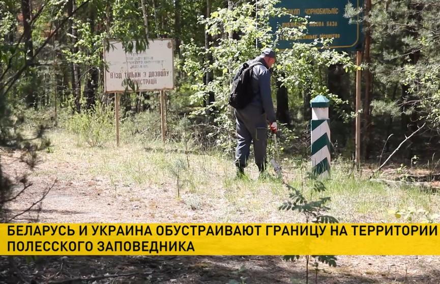 Беларусь и Украина обустраивают границу на территории Полесского заповедника