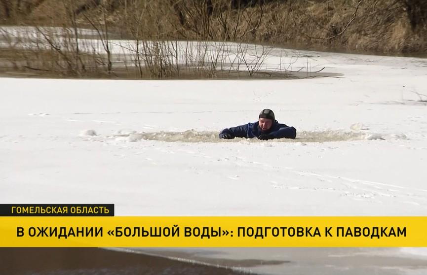 Вода «затопила» деревни, люди «покидают» дома. В Гомельской области готовятся к паводкам
