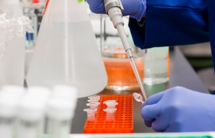 Ученые заявили о появлении нового опасного штамма коронавируса «йота». Смертность – до 82%