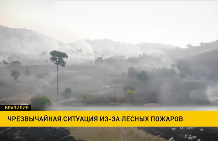 В некоторых регионах Бразилии введен режим чрезвычайного положения из-за лесных пожаров