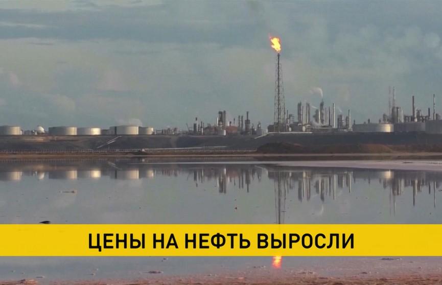 Впервые за полтора месяца стоимость нефти на мировых рынках растет.