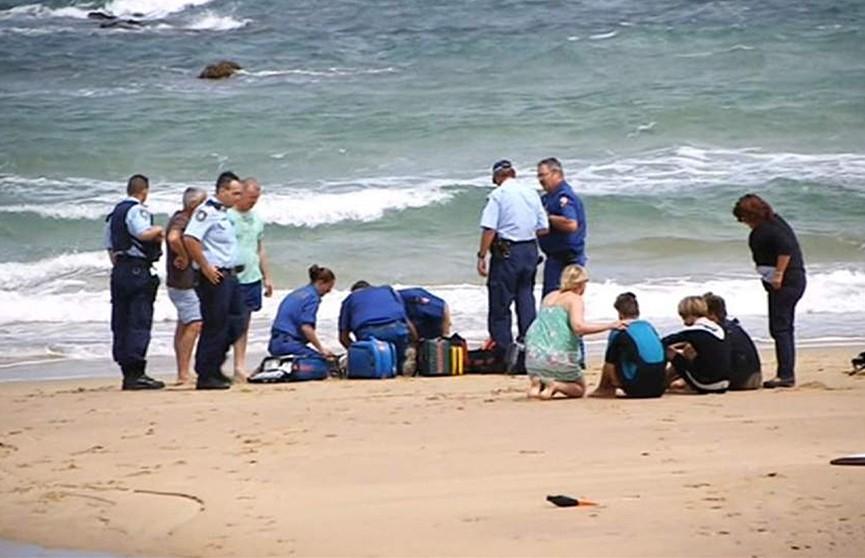 Акула убила подростка-серфера в Австралии