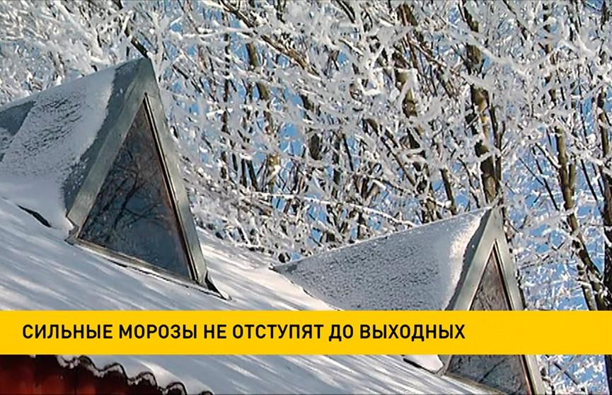 Леденящие ощущения приготовила белорусам погода: 24 января будет до –13