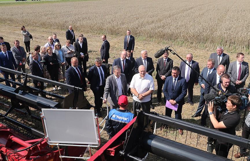 Ход уборочной и ситуация на местах: Президент проверил состояние дел в сельхозотрасли регионов
