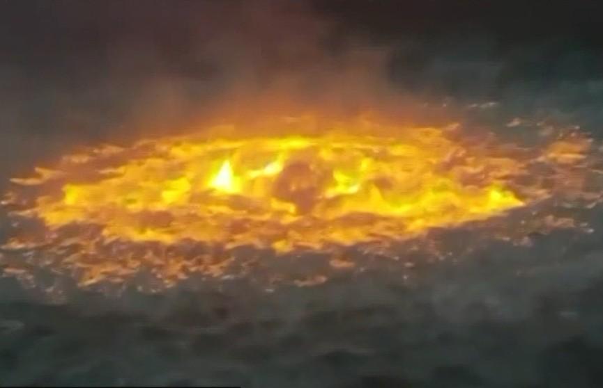 В водах Мексиканского залива открылся «портал в ад» (ВИДЕО)