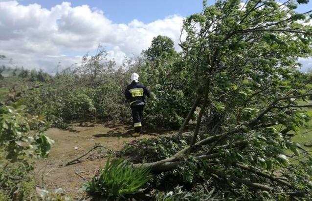 Мощный смерч повредил более сотни домов в Польше