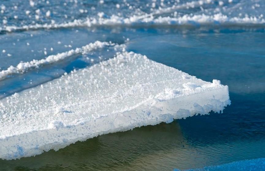 Двух рыбаков спасли с отколовшейся льдины на Чижовском водохранилище