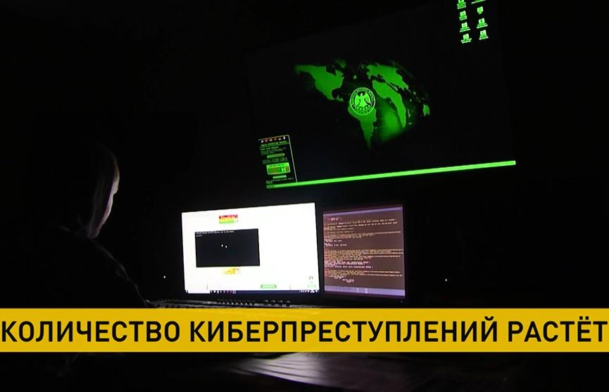 С начала 2021 года у белорусов украли как минимум миллион рублей