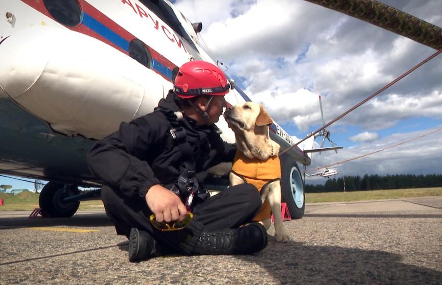 Кинологическая служба МЧС Беларуси: как работают и тренируются четвероногие спасатели