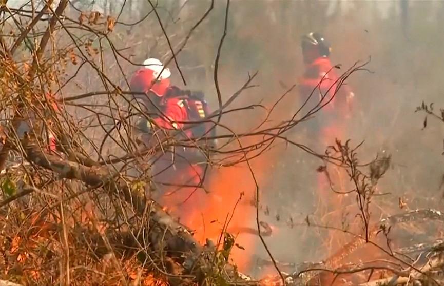 Сотни волонтеров борются с лесными пожарами в Боливии