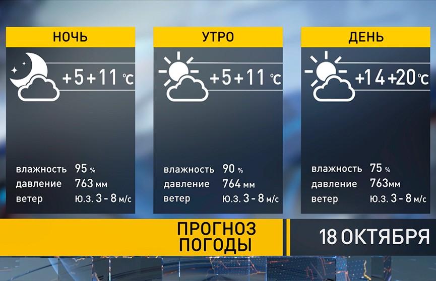 Без дождей и до +20°С: прогноз погоды на 18 октября