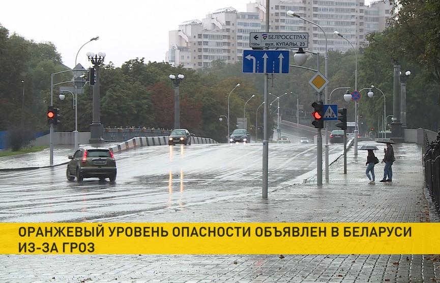 Дождь и сильный ветер в Брестской области: обесточены 15 деревень